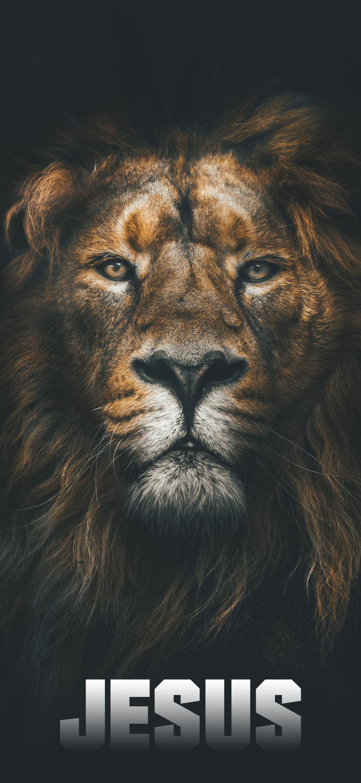 Jesus Christ Lion Screen Background