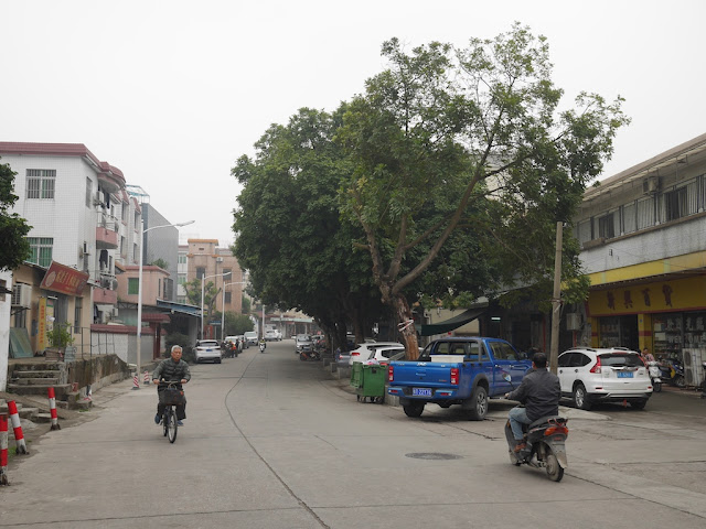 Aochang Road (鳌长公路) in Changjiang Villiage, Zhongshan (中山市长江村)