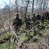 Ανάκληση αδειών και συγκέντρωση δυνάμεων στα σύνορα Σερβίας-Κοσόβου – Για επιχείρηση «GOLDEN SABLJA» μιλά το Βελιγράδι