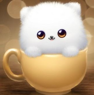 cute-cat-in-cup