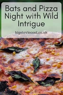Bats and Pizza Night with Wild Intrigue