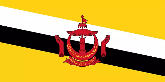 80 Strange Facts About Brunei in Hindi