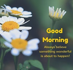 Good Morning English Quotes Wishes Images & Pictures with Nature & Flowers Photos
