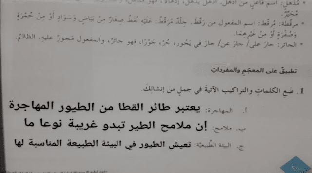 حل درس طائر القطا لغة عربية