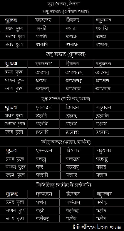 पश्य/दृश् धातु के रूप संस्कृत में – Drash/Pashya Dhatu Roop In Sanskrit