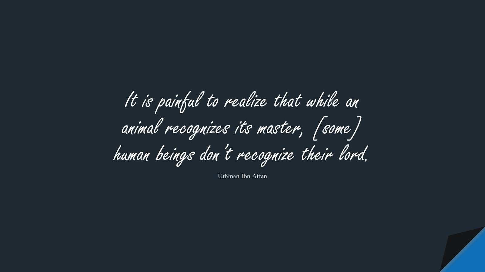It is painful to realize that while an animal recognizes its master, [some] human beings don't recognize their lord. (Uthman Ibn Affan);  #UthmanQuotes