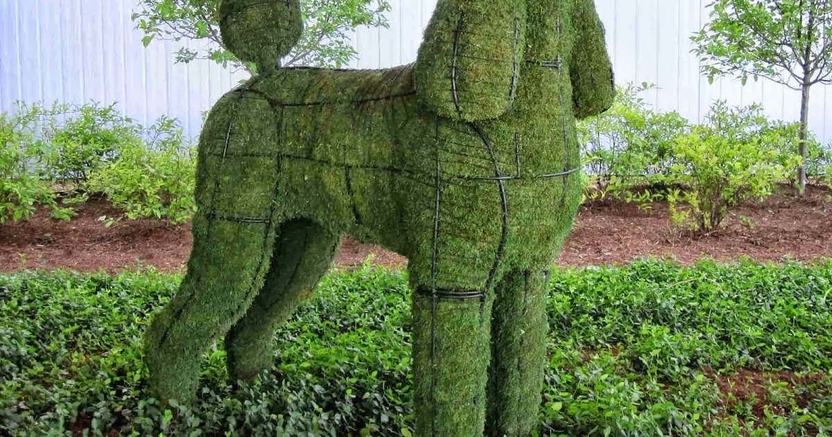 Why In Design For The Love Of Topiary Let S Add These