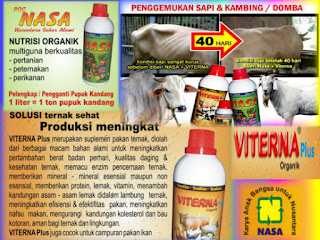 agen-nasa-di-mamasa-mamasa-085232128980