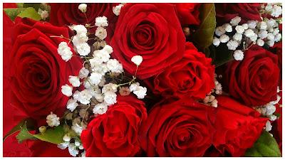 bouquet-roses-rouges-fleurs-blanches