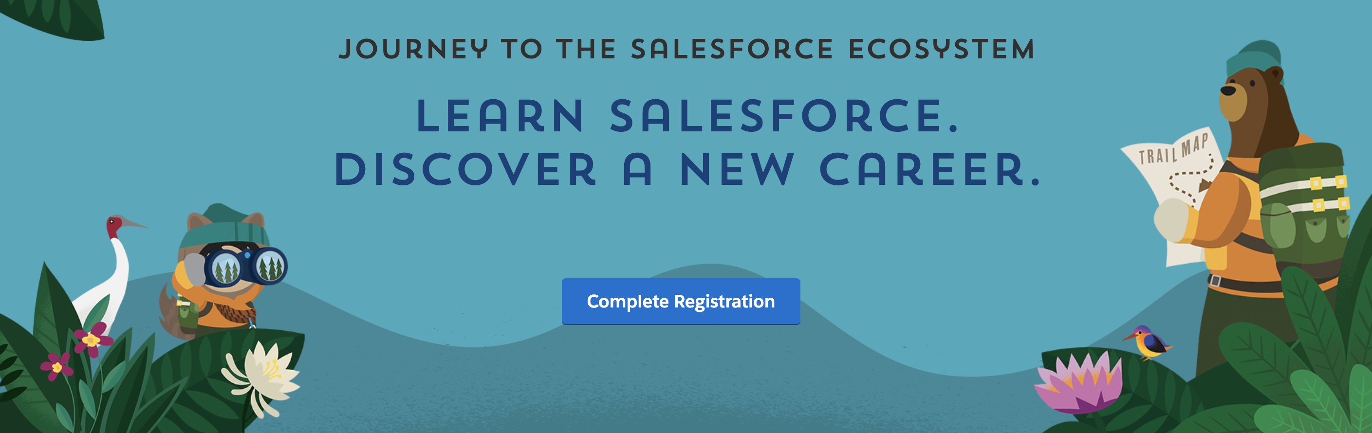 Journey to Salesforce