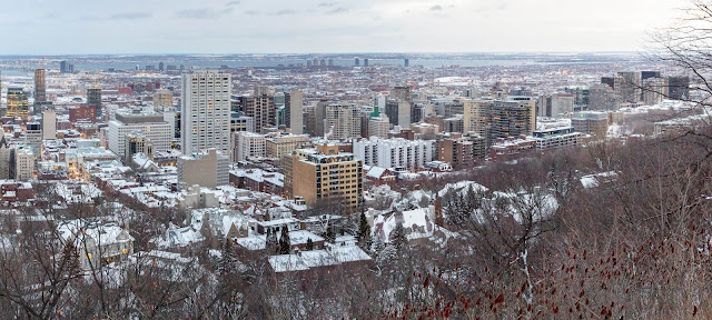 view from Mount Royal Park