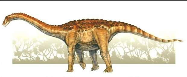 معلومات عن إيجيبتوصور Aegyptosauru