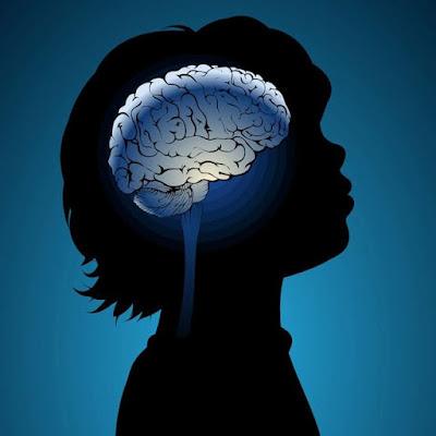 beyin-gelişimi-hastalikbelirtileri.net