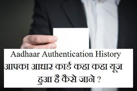 Aadhaar Authentication History