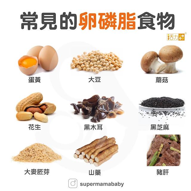 卵磷脂的食物來源有哪些?