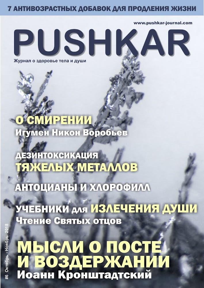 ЖУРНАЛ PUSHKAR #6 ОКТЯБРЬ-НОЯБРЬ 2018.