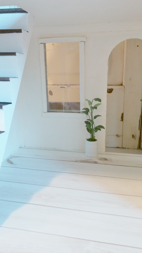Dollhouse plant