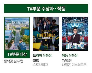pemenang baeksang arts awards kategori televisi drama