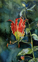 Thok Poo (Gloriosa superb or flame lily is a flowering plant , rows in several habitats like jungles)
