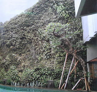 Taman Vertikal | Vertical Garden | jasataman.co.id VI
