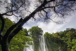 Wisata Curug Cikaso Sukabumi Destinasi Air Terjun Indah Di Jawa Tengah
