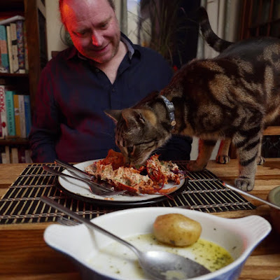 A tabby cat sniffs an empty lobster shell on a plate. A man watches him, smiling.