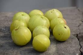 Amla sabji recipe in hindi-आंवले की सब्जी और साथ ही आंवले की अन्य रेसिपीज