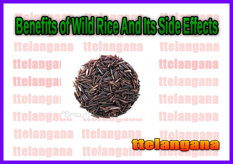 Benefits of Wild Rice And Its Side Effects
