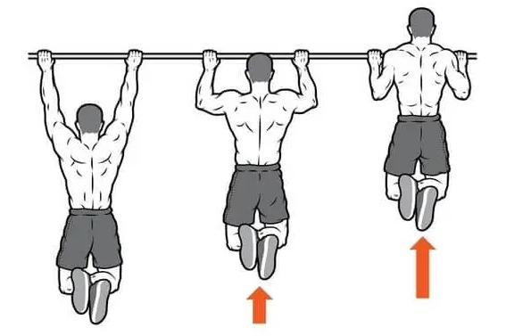 Pull-ups Back Workouts, Image:infofitness.nl