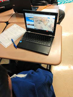 Students gain background knowledge of Africa, the author and main characters using an internet scavenger hunt