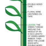 Ribbon Flowers Diagram