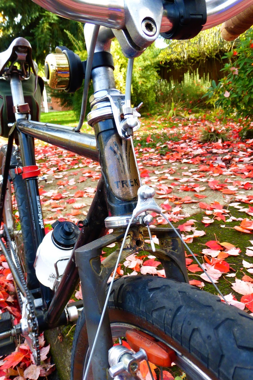 B-Stone, Eugene, Oregon, single speed, autumn, fall, red maple leaves,