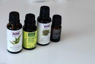 How Tea Tree Essential Oil Can Benefit Your Skin