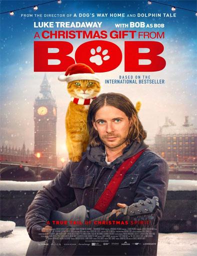pelicula Un regalo de Navidad de Bob