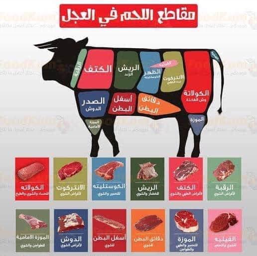 أجزاء اللحم فى العجل أو البقره أو الجاموسه  🐂🐂 أفضل قطعة لحم في الذبيحة