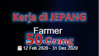 Peluang kerja di Jepang untuk 50 orang di sektor pertanian