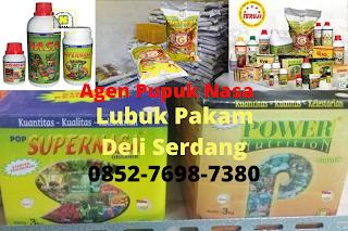 http://www.distributorpupuknasa.com/2020/08/agen-pupuk-nasa-lubuk-pakam-deli-serdang.html