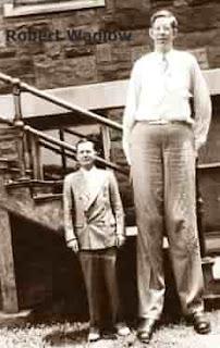 Dünyadaki En uzun İnsan Kim?