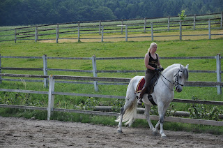 A white spanish dressage horse training in collected trot in outdoor school