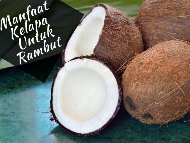 Manfaat kelapa untuk rambut