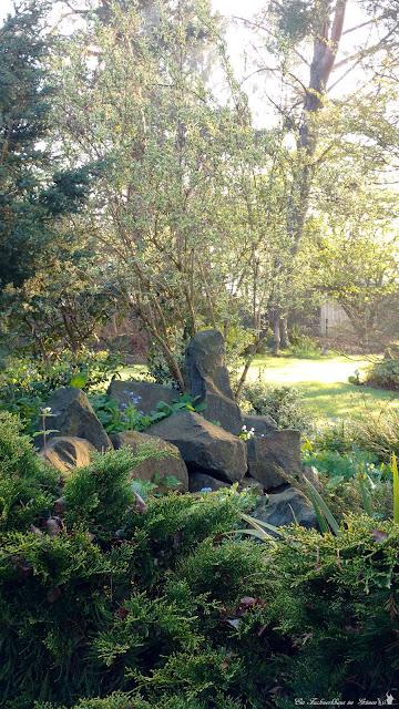 Immergruene Pflanzen, Basalt, Garten
