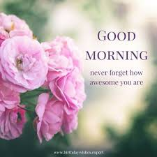 Good Morning Messages Wishes And Quotes With Flowers Pakistani