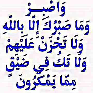 واصبر وما صبرك الا بالله ، ولا تحزن عليهم ولا تك فى ضيق مما يمكرون