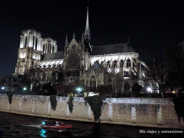 París de noche. Vistas de la catedral iluminada desde el Pont de l'Archeêché, París