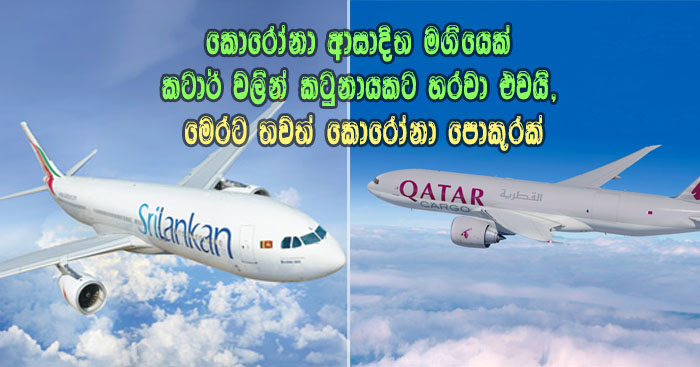 https://www.gossiplanka.com/2020/06/corona-passenger-return-from-qatar.html