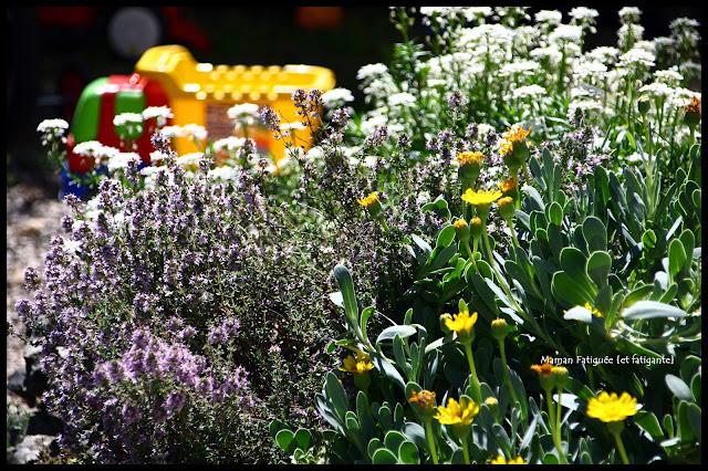 jeux et jardinage