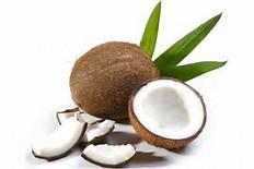 olio di cocco: cucina - cosmesi - sos da tenere in casa - Olio Di Cocco Cucina