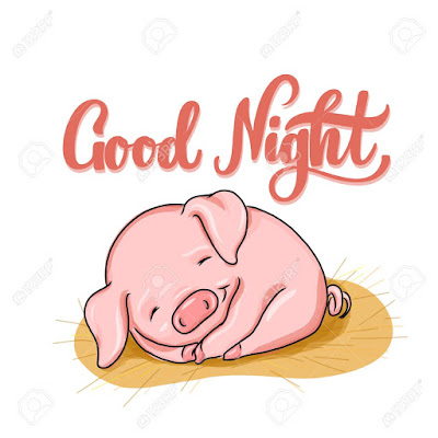 cute good night msg