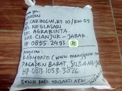 Benih padi yang dibeli   SUPIADIN Cianjur, Jabar.  (Setelah packing karung ).