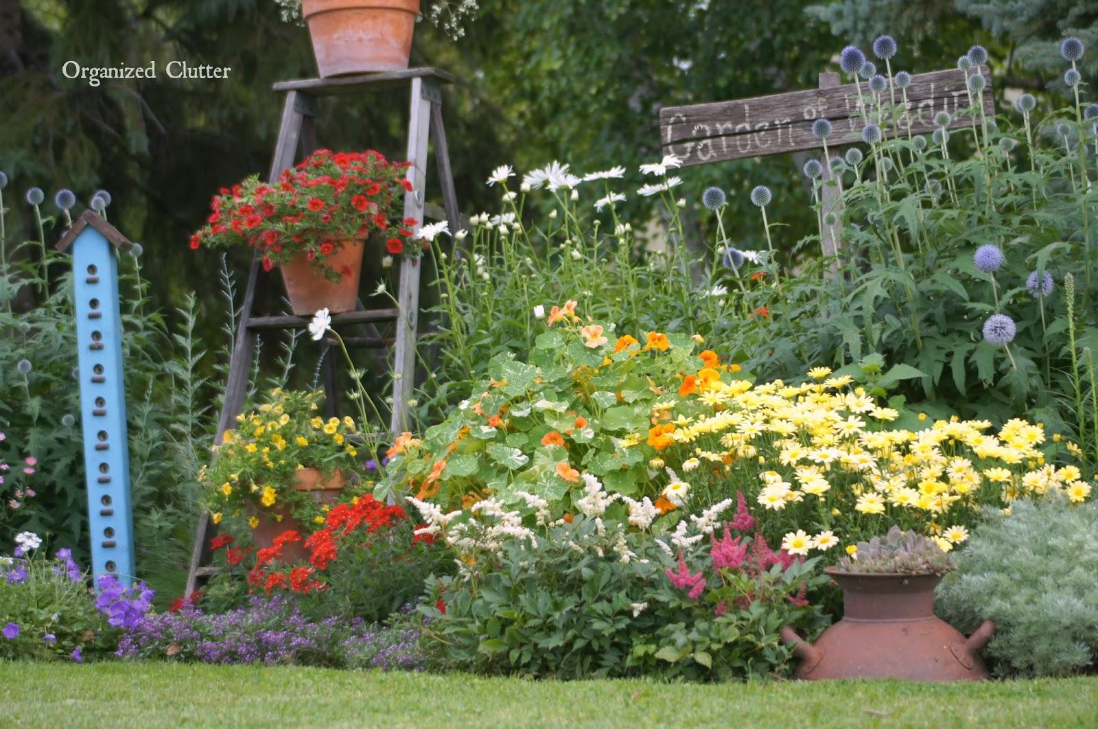 Garden of Annuals, Perennials & Junk www.organizedclutterqueen.blogspot.com